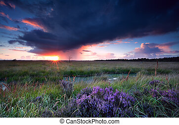 sunset sunbeams over swamp with heatherbefore storm
