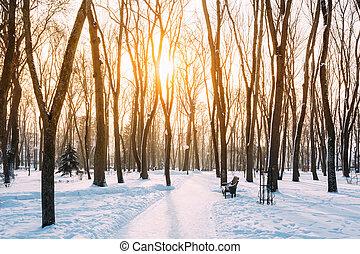 Sunset sunrise in beautiful winter snowy city park