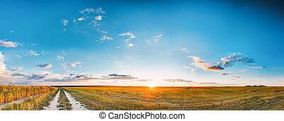 Sunset, Sunrise Over Rural Meadow Field And Country Road. Countryside Landscape With Path Way Under Scenic Summer Dramatic Sky In Sunset Dawn Sunrise. Sun Over Skyline Or Horizon