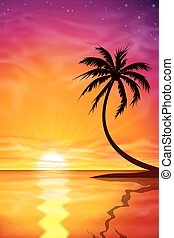 Sunset, Sunrise with Palm Tree