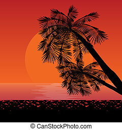 Sunset - These are silhouettes of palms in rays of sunset