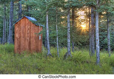 Sunset through spruce trees near the outhouse - Rays of the...