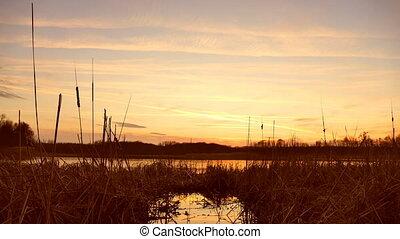 sunset time lapse river water grass sun nature landscape