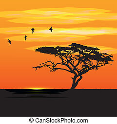 Sunset tree and birds silhouettes
