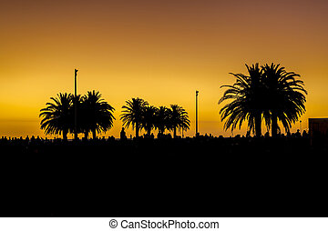 Sunset Urban Scene at Park, Montevideo, Uruguay
