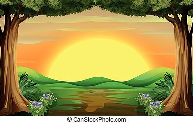 Sunset - Illustration of a beautiful view of sunset