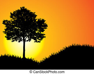 sunset. [Vector] - beautiful sunset. High-detailed...