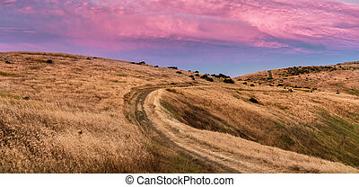 Sunset view of hiking trail through golden hills in Santa Cruz mountains; pink and red colored clouds covering the sky;  San Francisco bay area, California