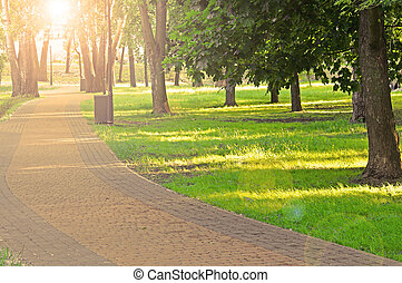 Sunset with glares in the park