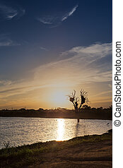 Sunset with lovely colours and clouds of tree in lake in the wil