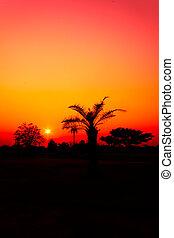 Sunset with orange sky.
