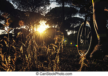 sunset with the leg of a cyclist in the foreground