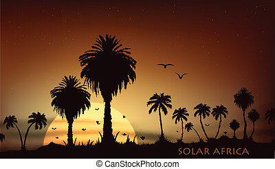 Sunsets over the savanna with palm trees