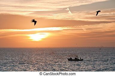 Sunset,sea birds and fishing boat