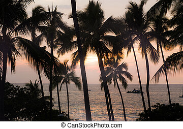 Sunsetting on Beach, in Kona, Big Island of Hawaii