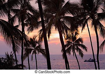Sunsetting on Kona Bay, Big Island of Hawaii