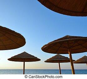 Sunshades - Group of sunshades against the sky blue