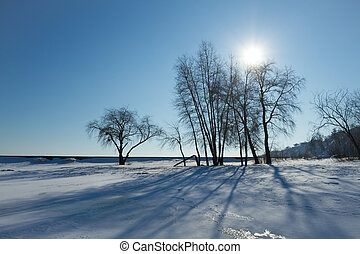 Sunshine and shadow of the tree in winter