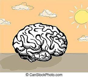 Sunshine mind - An image of a human brain in a sunshine...