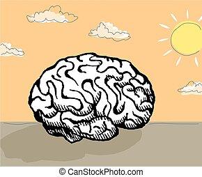 Sunshine mind - An image of a human brain in a sunshine...
