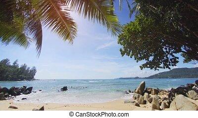 Sunshine Peeking through Palm Fronds over Thai Tropical...