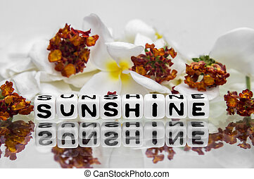 Sunshine text message with flowers.