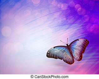 Sunshine with butterfly as abstract lights background
