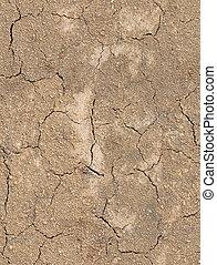suolo, fesso, tileable, struttura, suolo