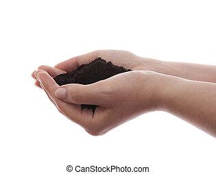 suolo, in, mani, isolato, bianco