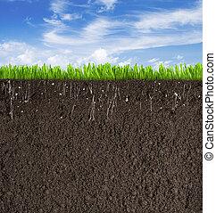suolo, o, sporcizia, sezione, con, erba, sotto, cielo, come,...