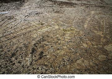 suolo, screpolatura, a, siccità