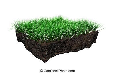 suolo, sezione
