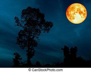 super blue blood moon over silhouette tree cerulean sky