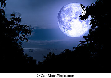 super full blue moon back silhouette tree and cloud sky