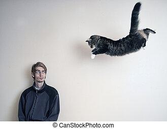 super, gato
