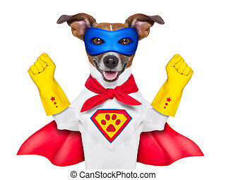 super hero dog with red cape and a blue mask