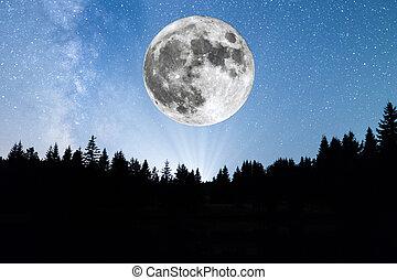 super, lua, árvores pinho, silueta, meio leitoso