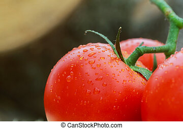Super macro shot of tomatoes surface with water drops. Selective focus with very