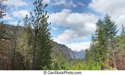 super, paysage, parc, (4096x2304)., beau, canyon, élevé, 4k, californie, usa, résolution, qualité, national, rois, coup