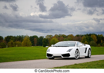 Supercar in golf club - White exclusive supercar on a narrow...