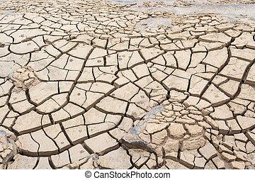 superficie, grieta, de, tierra, en, árido, área
