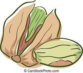 superfood, イラスト, pistachio