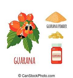 superfood, 平ら, セット, style., guarana