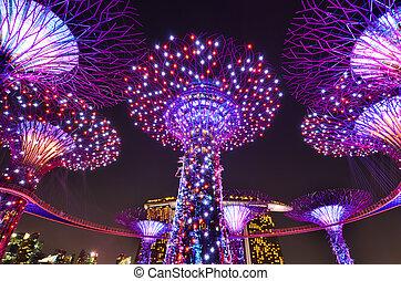 Supertree Grove at night, Singapore.