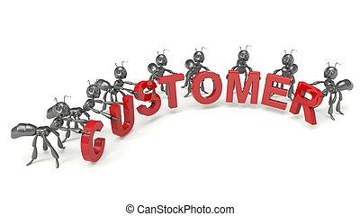 support client, team-concept