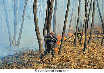 Suppression of forest fire 61