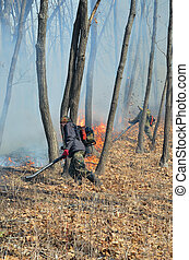 Suppression of forest fire 62