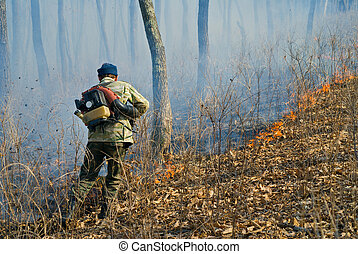 Suppression of forest fire 85