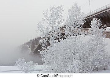 sur, brouillard, rivière, pont