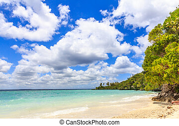 sur, caledonia, lifou, easo, pacífico, nuevo, playa